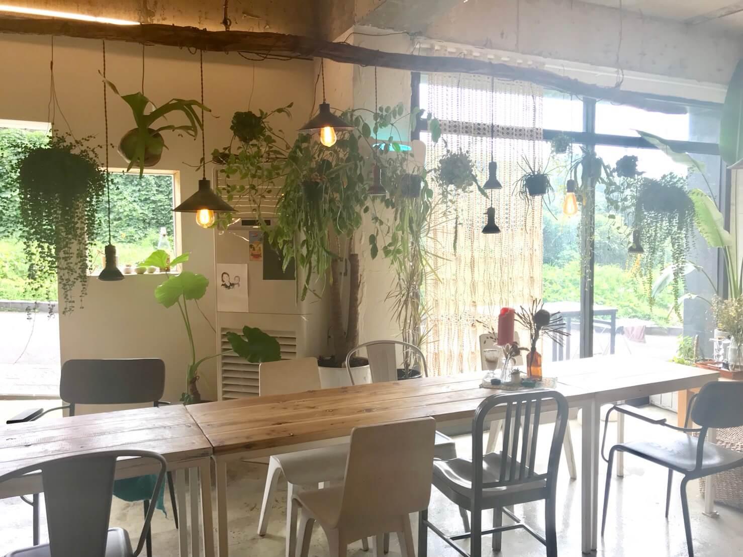 チェジュ島のオーガニックカフェの内観