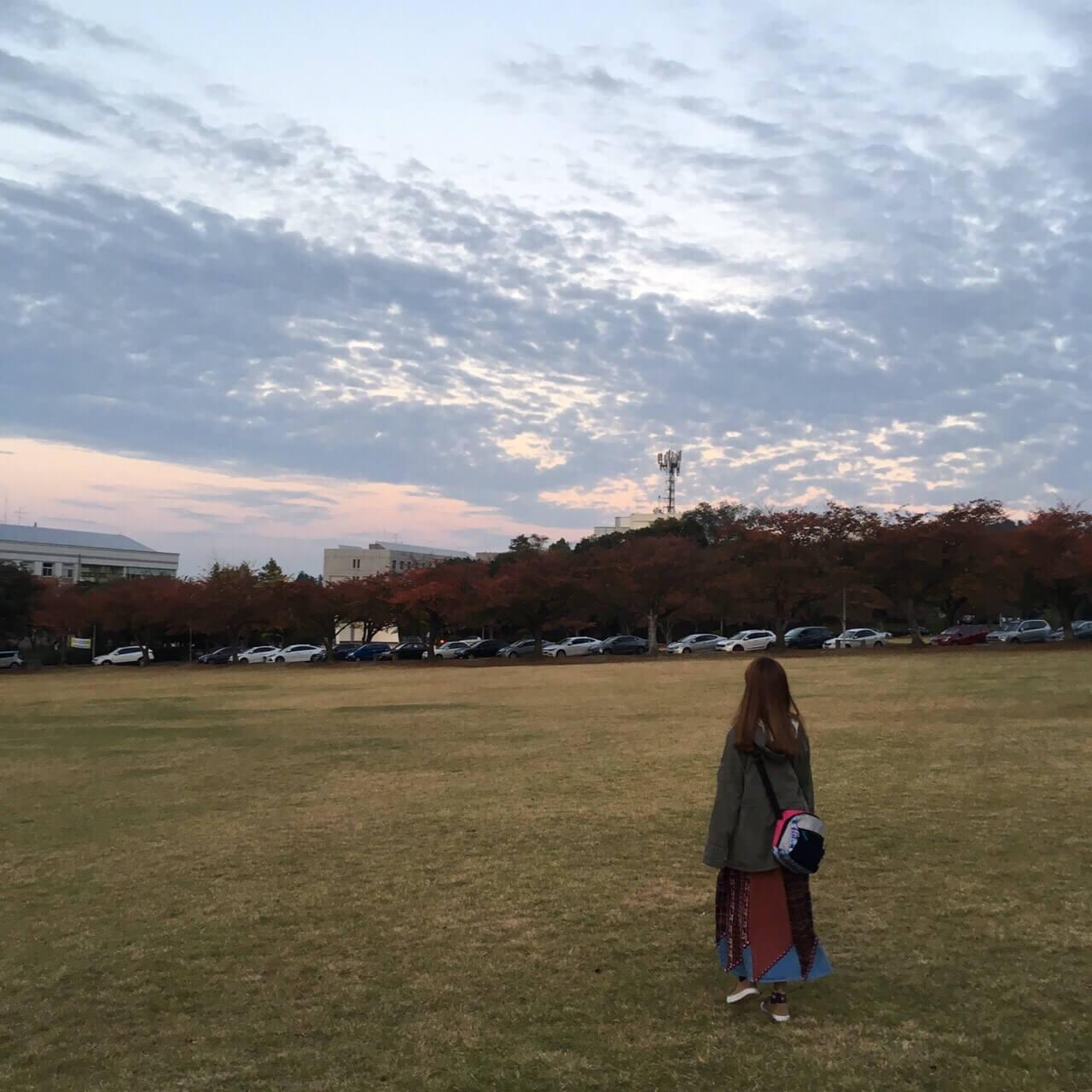 済州大学の大学内の芝生